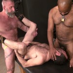 Raw-and-Rough-Jake-Wetmore-and-Dusty-Williams-and-Kid-Satyr-Bareback-Taking-Raw-Daddy-Loads-Cum-Amateur-Gay-Porn-03-150x150 Hairy Pup Taking Raw Interracial Daddy Loads Bareback